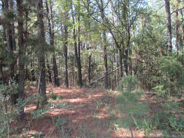 Rural Route Road, Kinta, OK 74552 (MLS #1940879) :: Hopper Group at RE/MAX Results