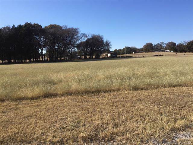 2329 Scenic View Road, Kingston, OK 73439 (MLS #1941449) :: Hopper Group at RE/MAX Results