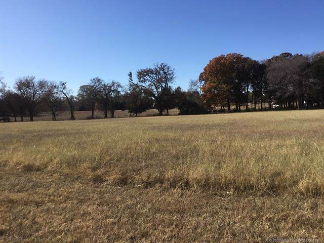 2333 Scenic View Road, Kingston, OK 73439 (MLS #1941454) :: Hopper Group at RE/MAX Results