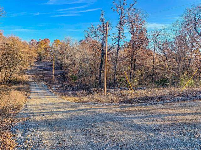 Jaguar Drive, Eufaula, OK 74432 (MLS #2011836) :: 918HomeTeam - KW Realty Preferred