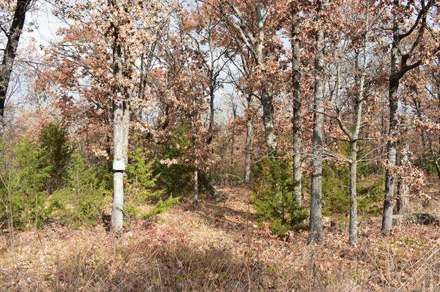 Riverview Drive, Cookson, OK 74427 (MLS #2014216) :: Active Real Estate