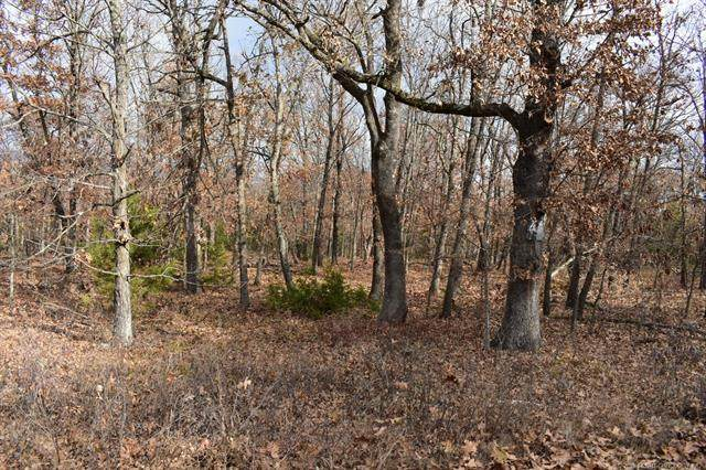 Riverview Drive, Cookson, OK 74427 (MLS #2014218) :: Active Real Estate