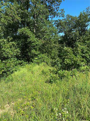 Scenic Circle, Skiatook, OK 74070 (MLS #2027022) :: Active Real Estate