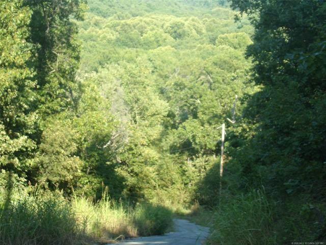 E 540 Road, Locust Grove, OK 74352 (MLS #2027564) :: Hopper Group at RE/MAX Results