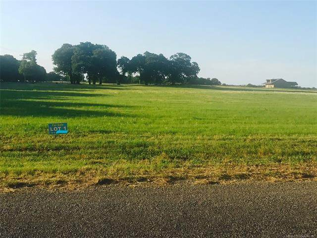 11940 Taylor Island View Road, Kingston, OK 73439 (MLS #2029316) :: Active Real Estate