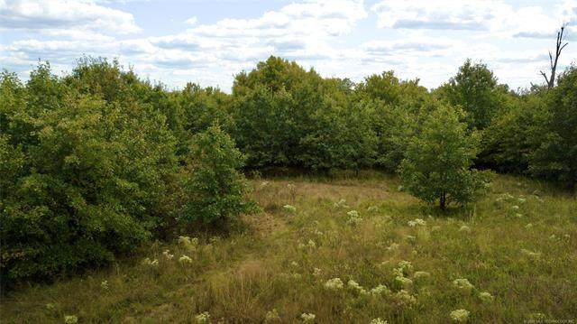 S County Road 1575 Street, Osage, OK 74054 (MLS #2035945) :: Hometown Home & Ranch