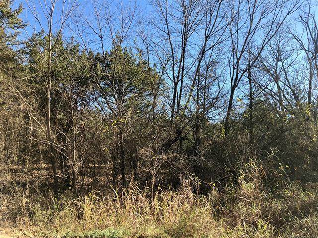 S Rock Creek Road, Tishomingo, OK 73460 (MLS #2041376) :: Hopper Group at RE/MAX Results