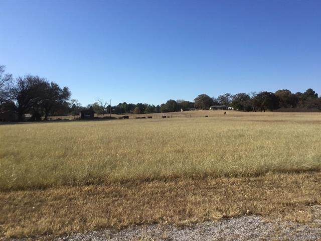 2321 Scenic View Road, Kingston, OK 73439 (MLS #2041610) :: Hopper Group at RE/MAX Results