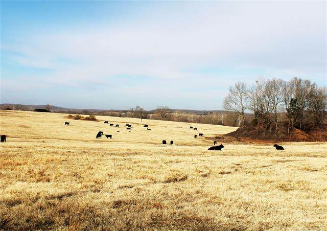 25372 Mine Road, Bokoshe, OK 74930 (MLS #2043807) :: RE/MAX T-town