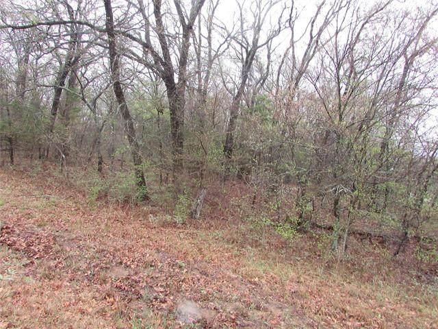 1916 Black Oak Trail, Kingston, OK 73439 (MLS #2109460) :: Hopper Group at RE/MAX Results
