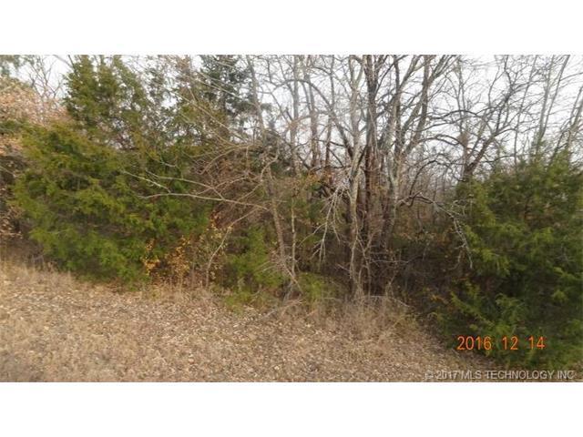 Driftwood Road, Kingston, OK 73439 (MLS #1727993) :: The Boone Hupp Group at Keller Williams Realty Preferred