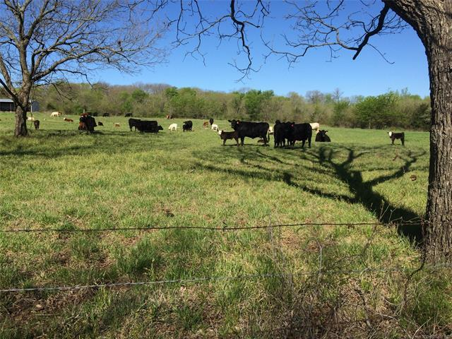 001 County Road 3720 Road, Coalgate, OK 74538 (MLS #1815538) :: Hopper Group at RE/MAX Results