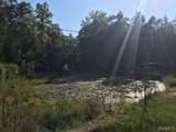 11295 Malone Creek Road - Photo 10