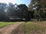 11295 Malone Creek Road - Photo 9