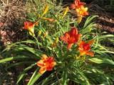 6013 Garden Lane - Photo 55