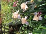 6013 Garden Lane - Photo 59