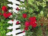 6013 Garden Lane - Photo 65