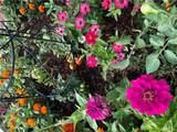 6013 Garden Lane - Photo 67