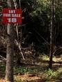 18 Santa Fe Trail - Photo 2