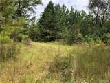 0 Hallman Lakes Dr. - Photo 4