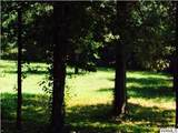 8003 Hazelhurst - Photo 46