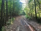 0 Hagler Coaling Road - Photo 6
