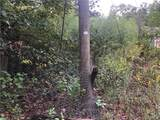 12641 Bone Camp Road - Photo 19