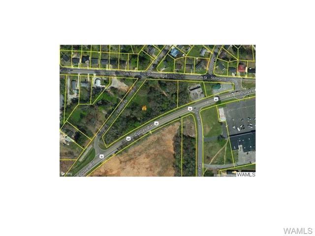 4005 Stillman Boulevard, TUSCALOOSA, AL 35401 (MLS #120849) :: Alabama Realty Experts