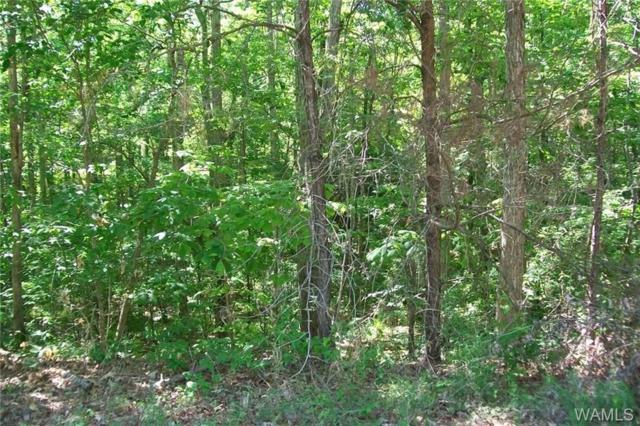 Lot 7 Preston Woods, NORTHPORT, AL 35475 (MLS #120961) :: Wes York Team