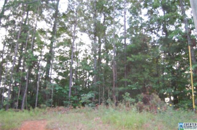 0 Mulligan Drive, MCCALLA, AL 35111 (MLS #121921) :: The Gray Group at Keller Williams Realty Tuscaloosa