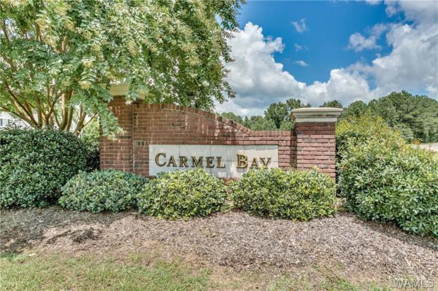 31 Carmel Bay Drive #31, NORTHPORT, AL 35475 (MLS #122202) :: The Alice Maxwell Team