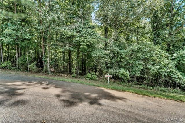 56 Carmel Bay Drive #56, NORTHPORT, AL 35475 (MLS #122220) :: The Alice Maxwell Team