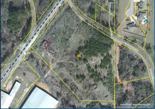 0 Cherokee Bend, MOUNDVILLE, AL 35474 (MLS #122384) :: The Advantage Realty Group