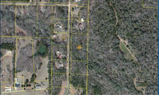 0 Hummingbird Lane, DUNCANVILLE, AL 35456 (MLS #122532) :: Williamson Realty Group
