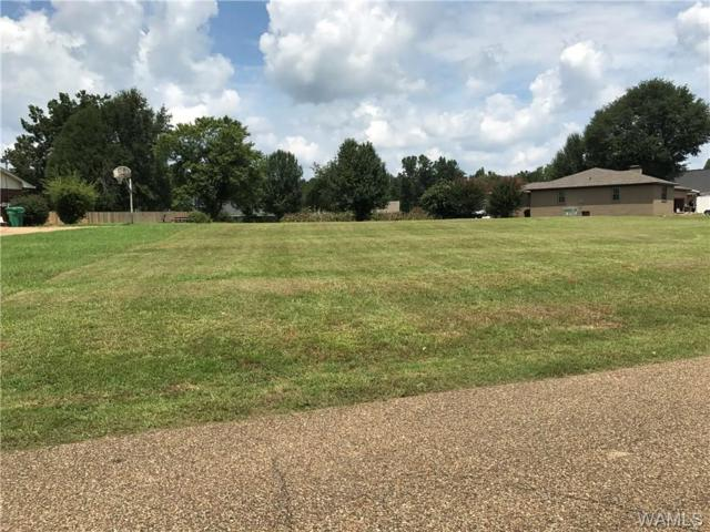 0000 Lakeview Manor Drive, NORTHPORT, AL 35473 (MLS #122575) :: Alabama Realty Experts