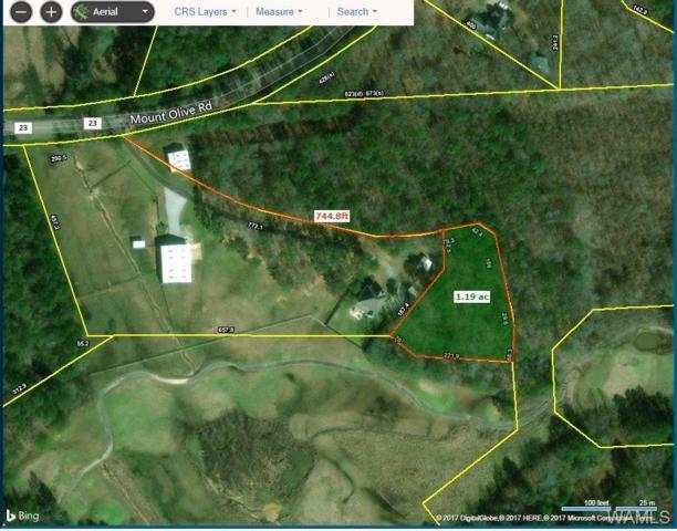 0 Mt. Olive Road, COKER, AL 35452 (MLS #124196) :: The Advantage Realty Group
