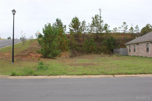 000 Julia Pearl Lane, TUSCALOOSA, AL 35405 (MLS #124602) :: The Gray Group at Keller Williams Realty Tuscaloosa