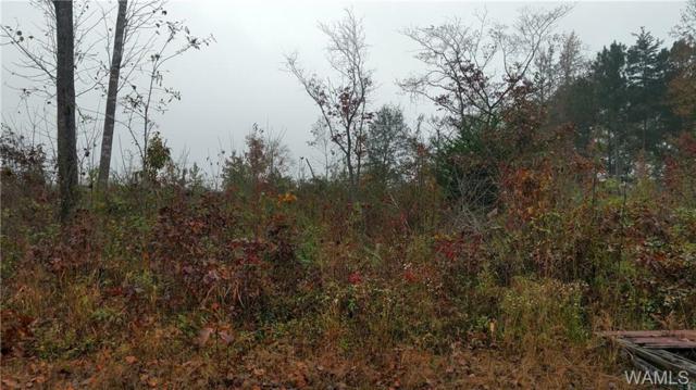 1 Chestnut Lane Road, BROOKWOOD, AL 35444 (MLS #124627) :: Alabama Realty Experts