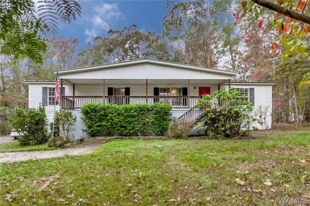 12969 Cottonwood Drive, LAKE VIEW, AL 35111 (MLS #124658) :: The Gray Group at Keller Williams Realty Tuscaloosa