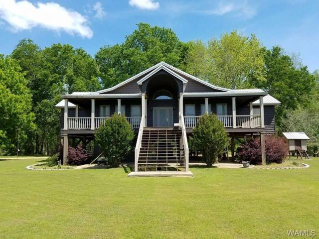 13743 Riverbend Road, MOUNDVILLE, AL 35474 (MLS #124667) :: The Advantage Realty Group