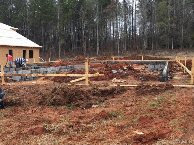 11435 Stella Way #237, NORTHPORT, AL 35475 (MLS #125244) :: Alabama Realty Experts