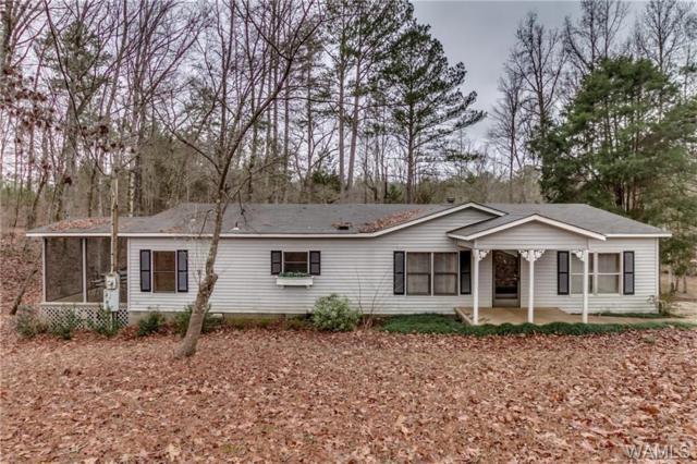 16644 Pine Ridge Drive, NORTHPORT, AL 35475 (MLS #125265) :: Alabama Realty Experts