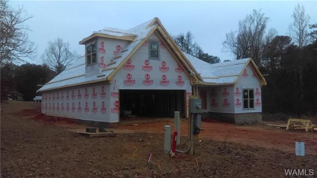 10436 Nicole Street, VANCE, AL 35490 (MLS #125272) :: Alabama Realty Experts