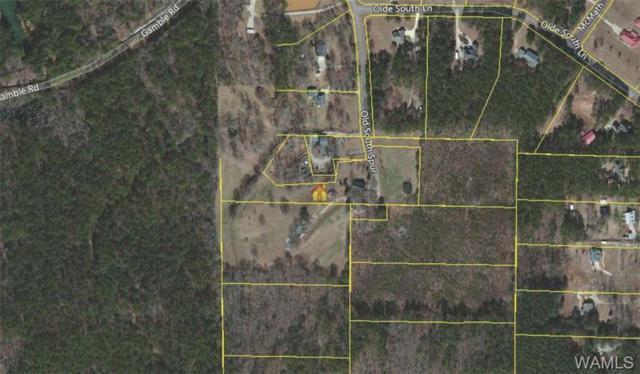 12138 Olde South Spur, MCCALLA, AL 35111 (MLS #125298) :: Alabama Realty Experts