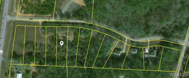 5 Hagler Mill Road, NORTHPORT, AL 35475 (MLS #125340) :: The Gray Group at Keller Williams Realty Tuscaloosa