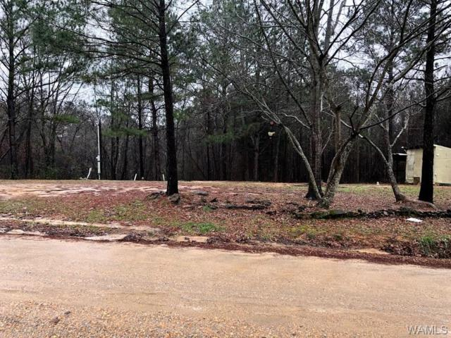 325 Valley Point Drive, GORDO, AL 35466 (MLS #125695) :: The Gray Group at Keller Williams Realty Tuscaloosa