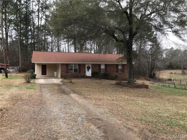 14143 Delta Drive, TUSCALOOSA, AL 35405 (MLS #125746) :: The Gray Group at Keller Williams Realty Tuscaloosa