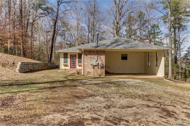 15245 Lake Payne, DUNCANVILLE, AL 35456 (MLS #125773) :: The Gray Group at Keller Williams Realty Tuscaloosa