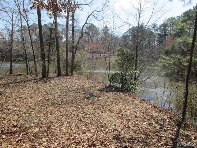63 Hidden Cove, TUSCALOOSA, AL 35405 (MLS #125792) :: The Gray Group at Keller Williams Realty Tuscaloosa