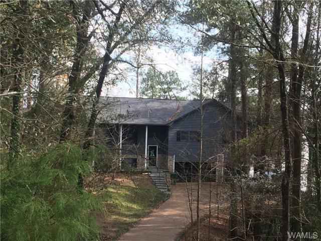 15385 Choctaw Trail, NORTHPORT, AL 35475 (MLS #125843) :: The Alice Maxwell Team